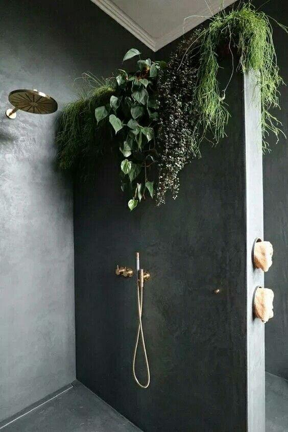 badkamer feng shui planten
