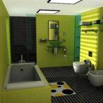 Groen met zwarte badkamer