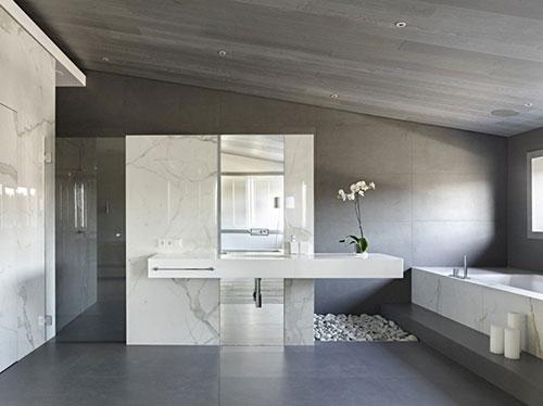 Grote grijze badkamer